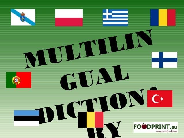 Multilingual dictionary i