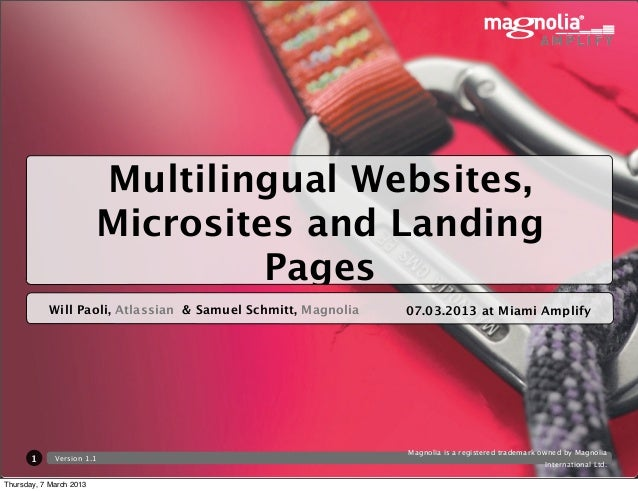 Multilingual Websites,                         Microsites and Landing                                  Pages            Wi...