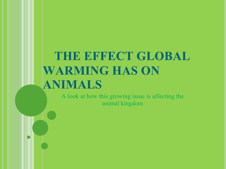 0866181 The Effect Global Warming Has on Animals