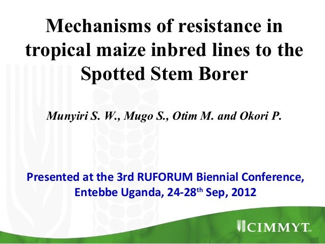 Mechanisms of resistance in tropical maize inbred lines to the Spotted Stem Borer