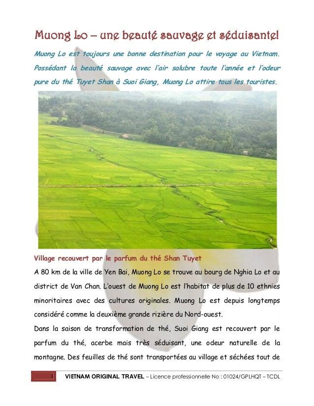 Muong Lo – une beauté sauvage et séduisante! Muong Lo est toujours une bonne destination pour le voyage au Vietnam. Posséd...