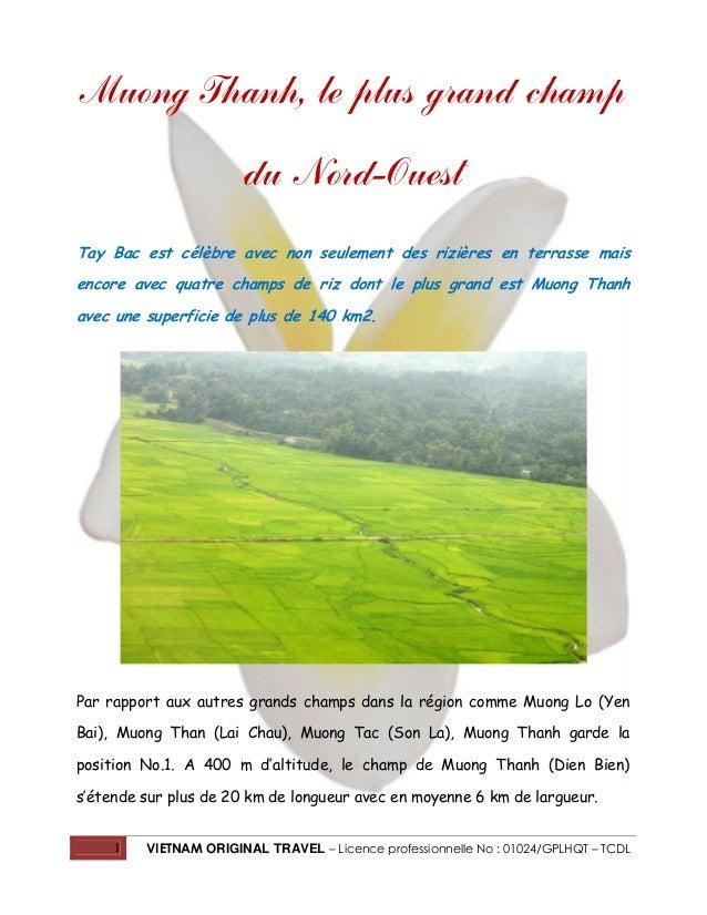 1 VIETNAM ORIGINAL TRAVEL – Licence professionnelle No : 01024/GPLHQT – TCDL Muong Thanh, le plus grand champ du Nord-Oues...