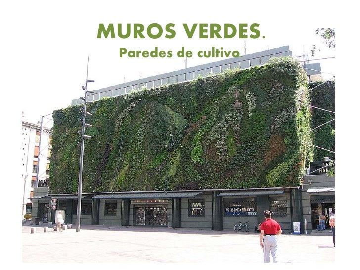 Muros verdes 444444