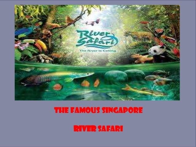 The Famous Singapore RIVER SAFARI