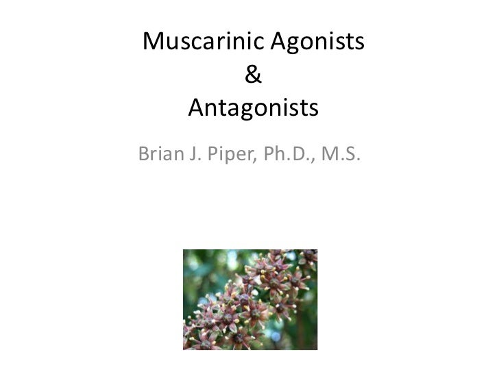 Muscarinic agonists and antagonists