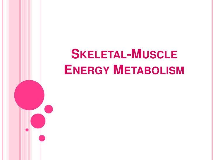 Skeletal-Muscle Energy Metabolism<br />