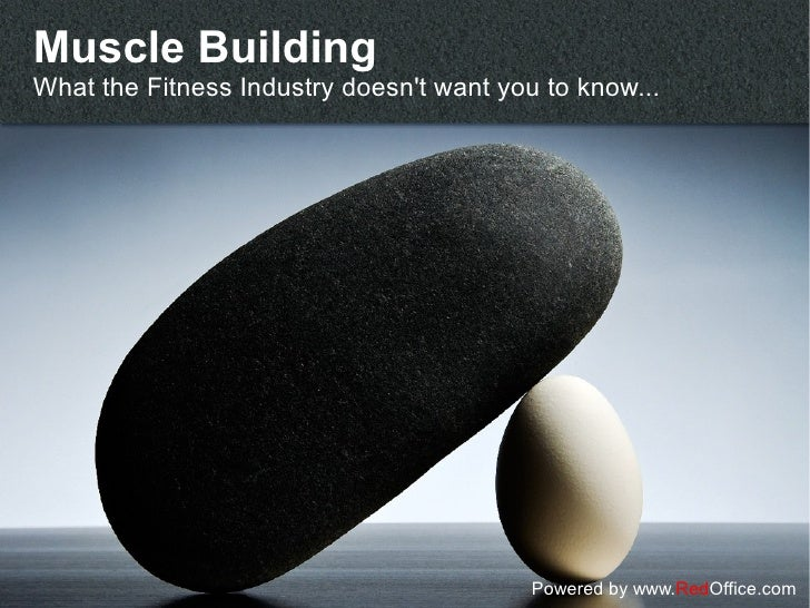 Muscle BuildingWhat the Fitness Industry doesnt want you to know...                                          Powered by ww...