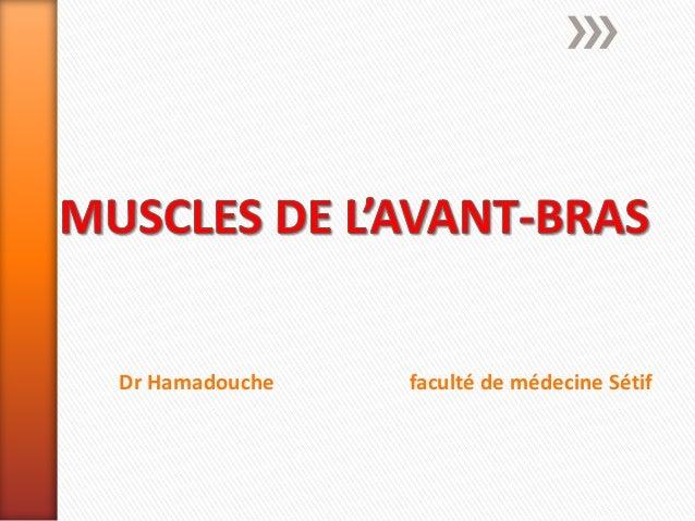 Dr Hamadouche faculté de médecine Sétif