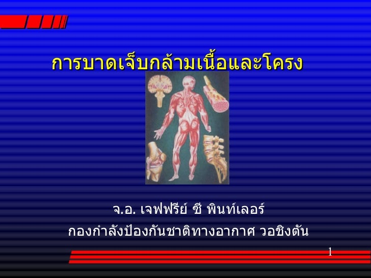 Muscle Skeletal (Thai)