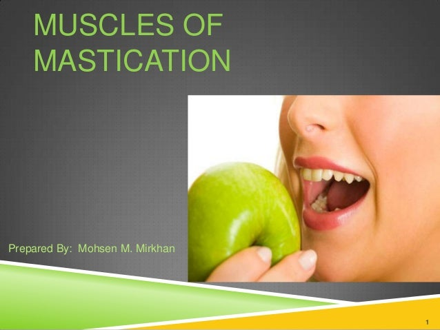 MUSCLES OF MASTICATION 1 Prepared By: Mohsen M. Mirkhan
