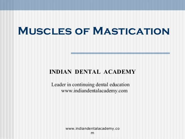 Muscles of mastication/ orthodontics courses in india