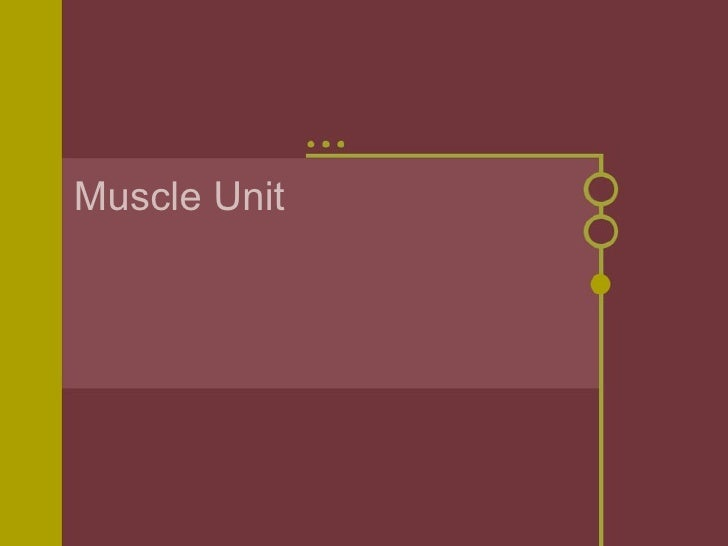Muscle unit blog
