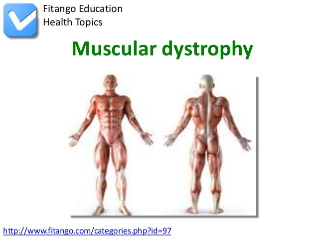 Fitango Education          Health Topics                 Muscular dystrophyhttp://www.fitango.com/categories.php?id=97