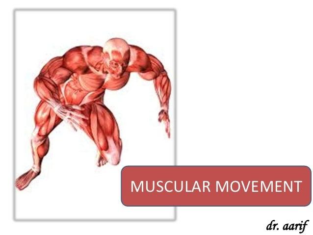 MUSCULAR MOVEMENT             dr. aarif