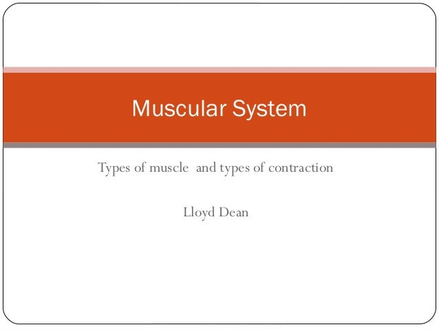 Muscular System Types of muscle and types of contraction Lloyd Dean