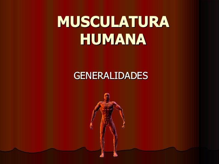 MUSCULATURA HUMANA GENERALIDADES MUSCULATURA HUMANA GENERALIDADES