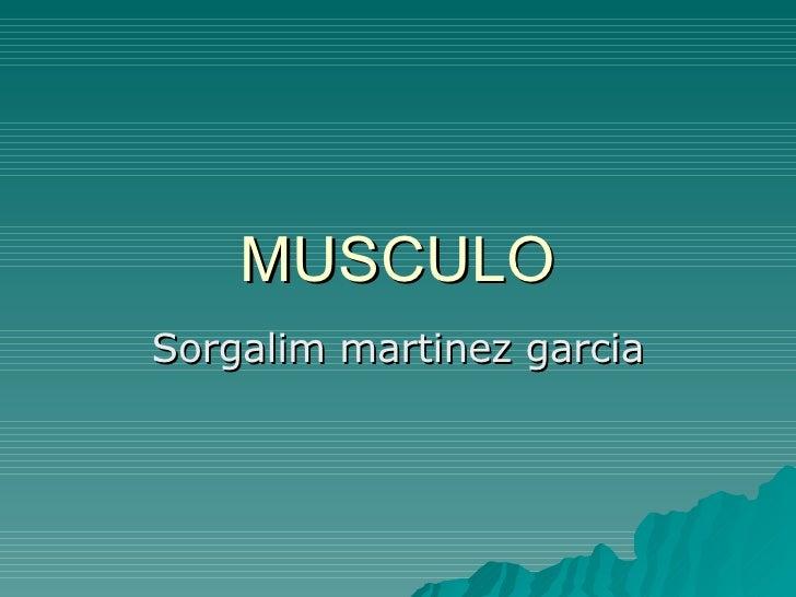 MUSCULO Sorgalim martinez garcia