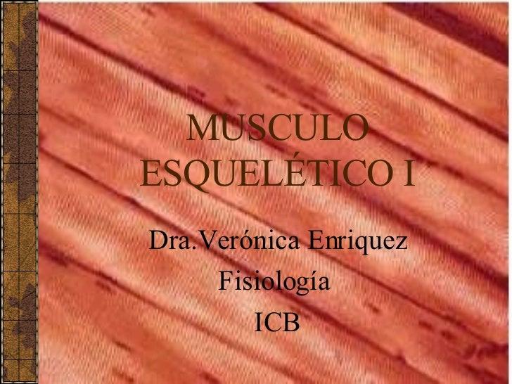 MUSCULO ESQUELÉTICO I Dra.Verónica Enriquez Fisiología  ICB