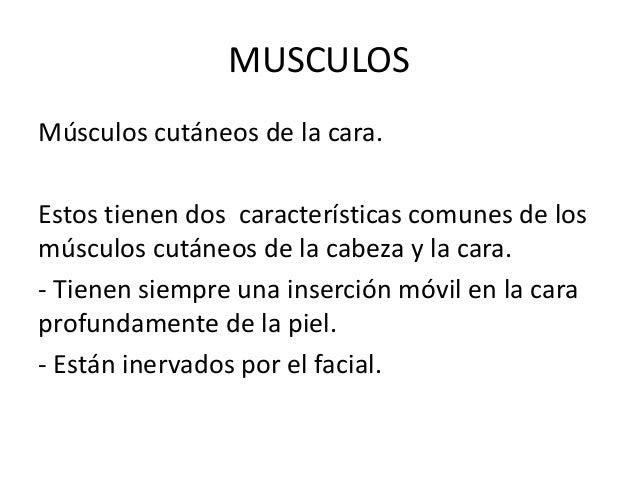 MUSCULOSMúsculos cutáneos de la cara.Estos tienen dos características comunes de losmúsculos cutáneos de la cabeza y la ca...