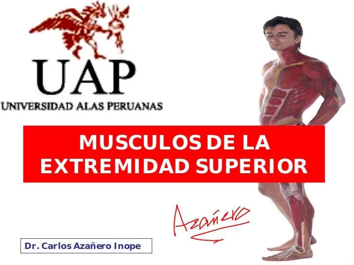 MUSCULOS DE LA    EXTREMIDAD SUPERIOR   Dr. Carlos Azañero Inope
