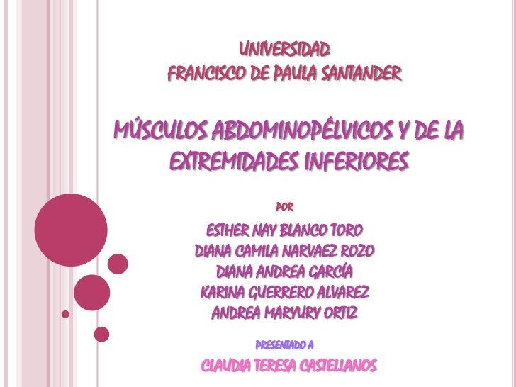 UNIVERSIDAD FRANCISCO DE PAULA SANTANDER<br />MÚSCULOS ABDOMINOPÉLVICOS Y DE LA EXTREMIDADES INFERIORES<br />POR<br />ESTH...