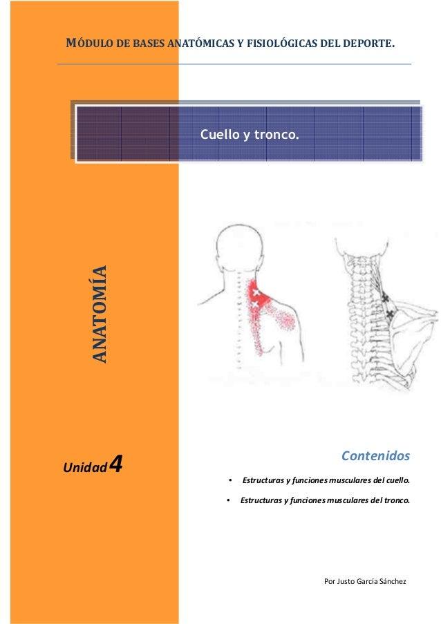 Por Justo García Sánchez Contenidos • Estructuras y funciones musculares del cuello. • Estructuras y funciones musculares ...