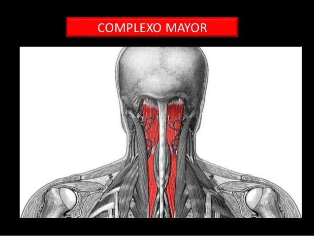 La osteocondrosis sheynogo del departamento del dolor en los ojos