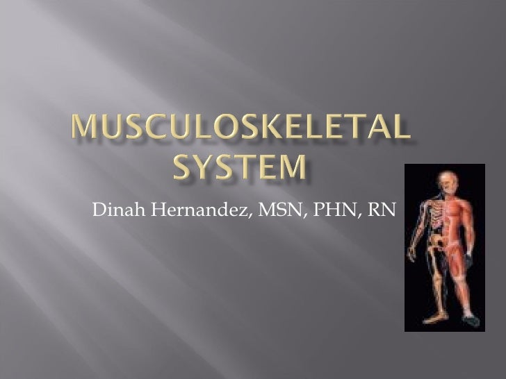 The Musculoskeletal System