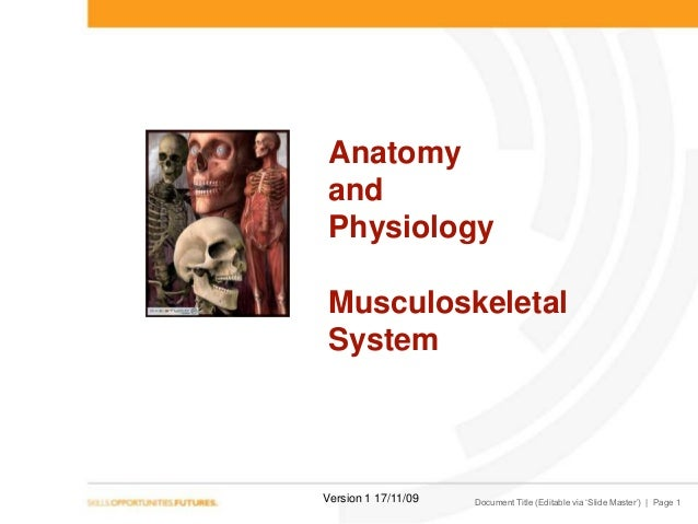 Anatomy and Physiology Musculoskeletal System  Version 1 17/11/09  Document Title (Editable via 'Slide Master') | Page 1