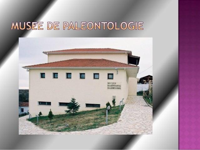 Le village Nostimo setrouve au sud de laprefecture de Kastoria etappartient a lamunicilalite de Orestis.Il est environ a 2...