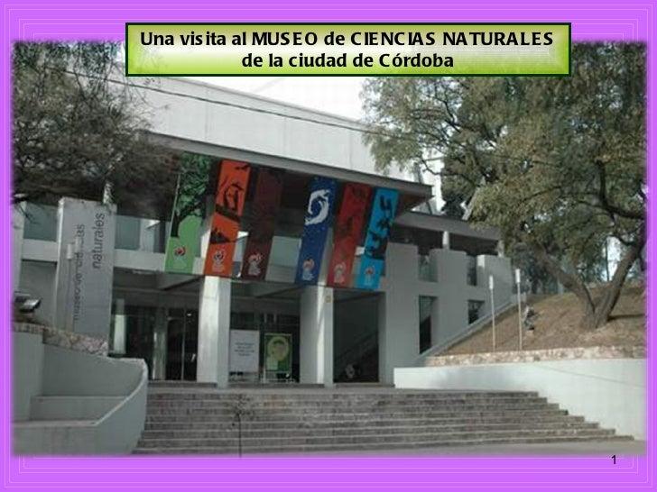 Una visita al MUSEO de CIENCIAS NATURALES de la ciudad de Córdoba