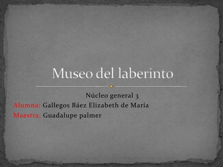 Núcleo general 3Alumna: Gallegos Báez Elizabeth de MaríaMaestra: Guadalupe palmer