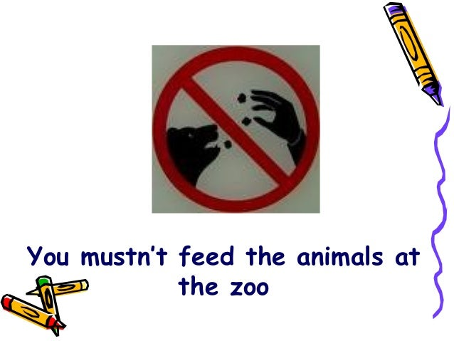 You mustn't feed the animals atthe zoo