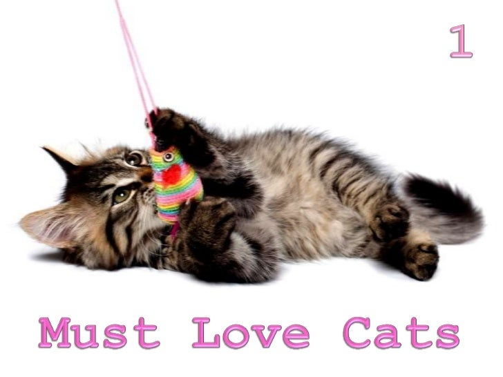 Must love cats dating