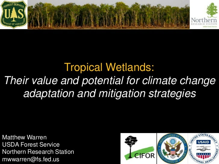 Tropical Wetlands:Their value and potential for climate change   adaptation and mitigation strategiesMatthew WarrenUSDA Fo...