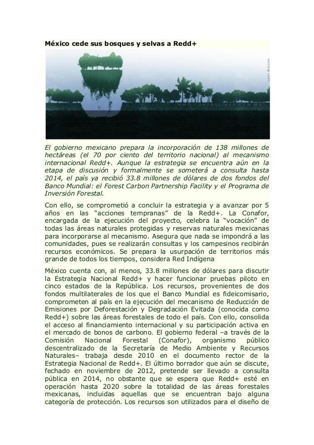 México cede sus bosques y selvas a Redd+ El gobierno mexicano prepara la incorporación de 138 millones de hectáreas (el 70...