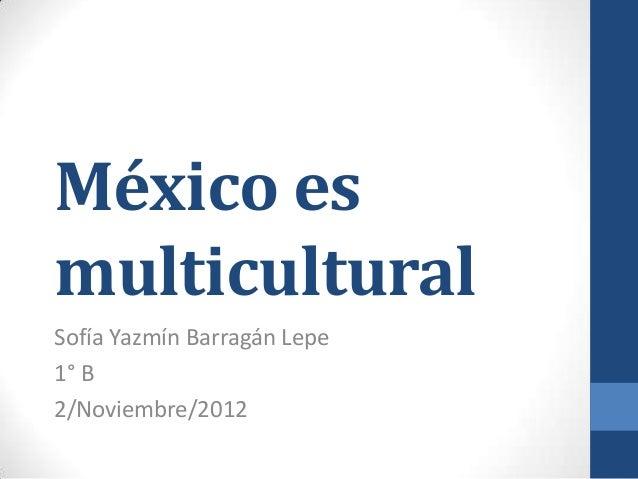 México esmulticulturalSofía Yazmín Barragán Lepe1° B2/Noviembre/2012