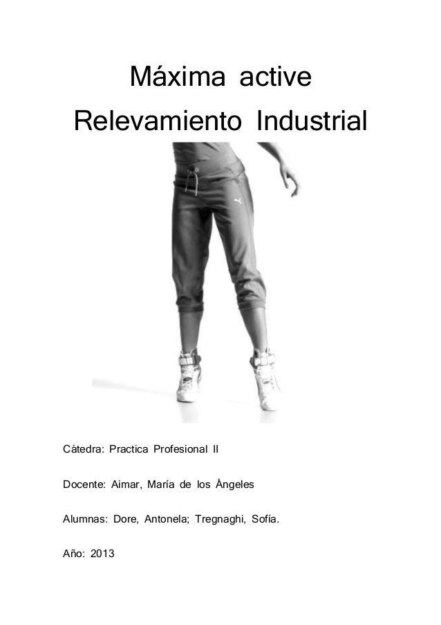 Máxima active Relevamiento Industrial  Cátedra: Practica Profesional II Docente: Aimar, María de los Ángeles Alumnas: Dore...
