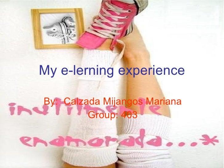 My E Lerning Experience