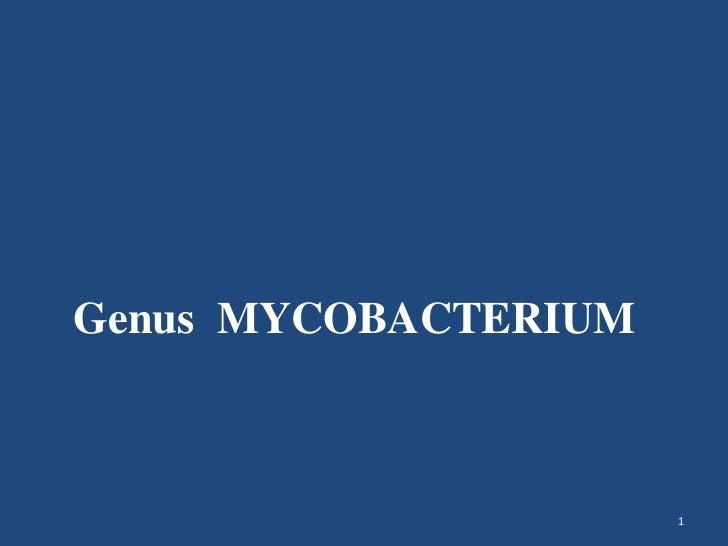 1<br />Genus  MYCOBACTERIUM<br />