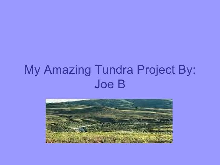 My Amazing Tundra Project By: Joe B