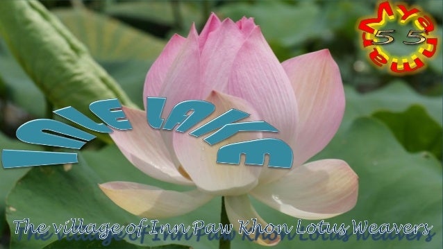 Inle Lake, Fishermen and Lotus Weavers