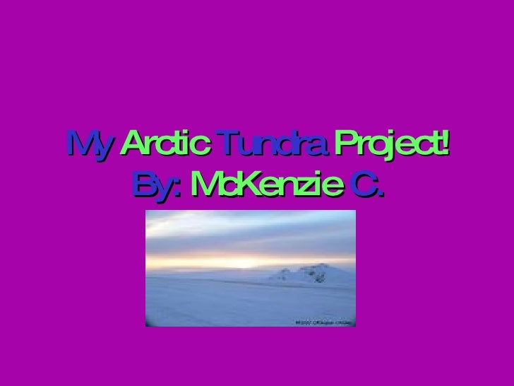 My  Arctic  Tundra  Project! By:  McKenzie  C.