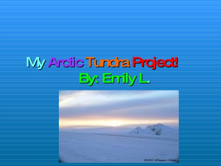 My  Arctic   Tundra   Project!   By: Emily L .