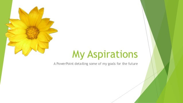 What Are Some Examples of Goals and Aspirations?