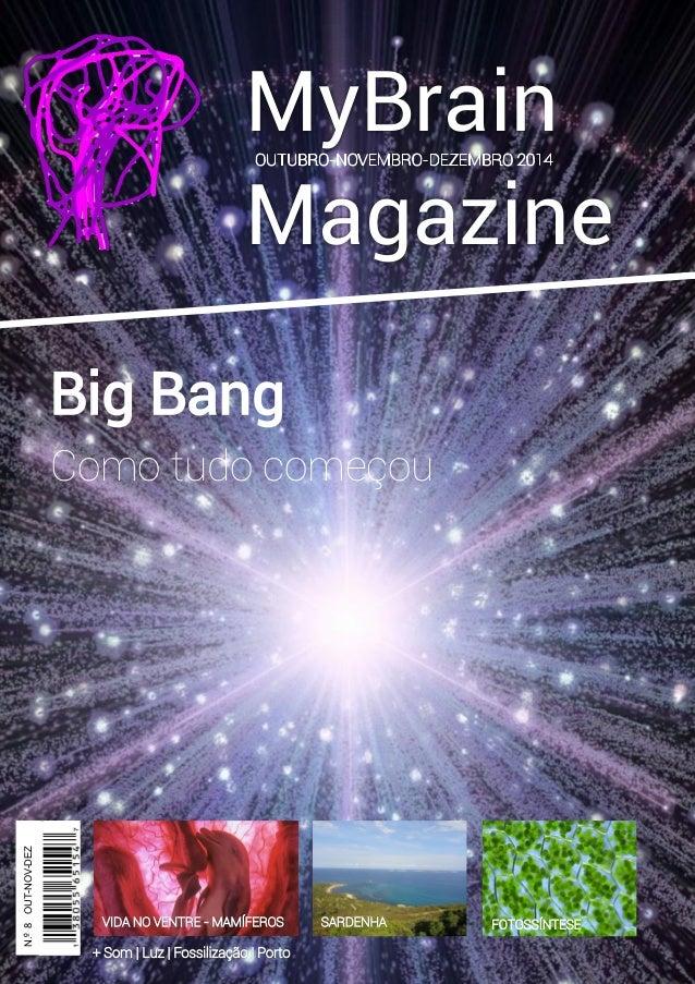 MyBrain Magazine Big Bang  2014  N.º 8 OUT-NOV-DEZ  Como tudo começou