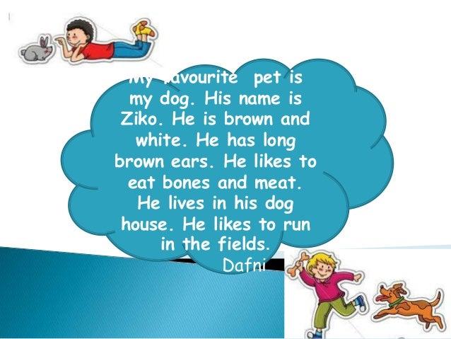 my favorite dog essay ~ Yuhu.mx.tl