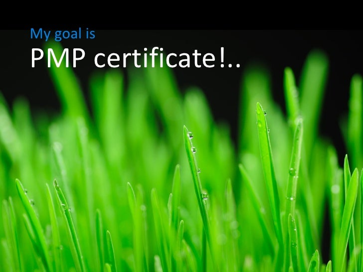 My goal is PMP certificate!..