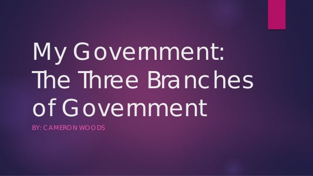 My Government: The Three Branches of Government BY: CAMERON WOODS