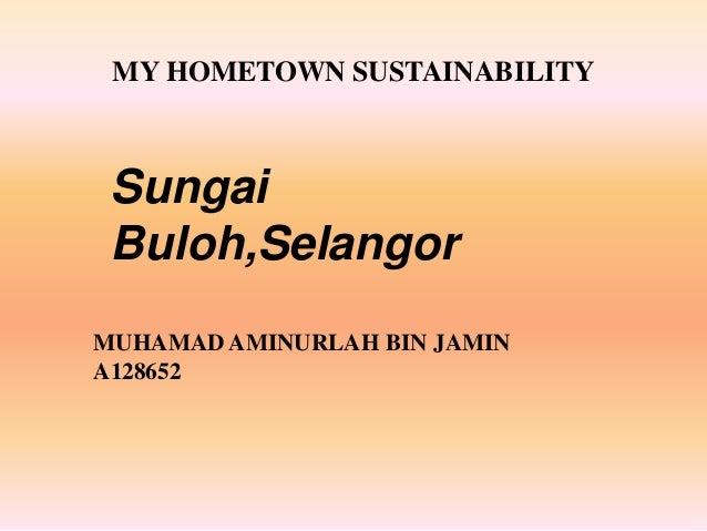 MY HOMETOWN SUSTAINABILITY MUHAMAD AMINURLAH BIN JAMIN A128652 Sungai Buloh,Selangor